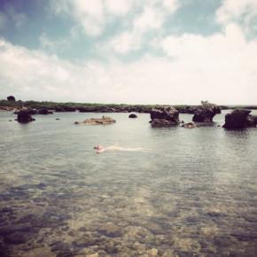 〖愛遊寶島〗潛水綠寶石-綠島